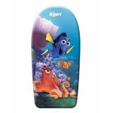 Placi de inot si surf